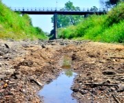 Water scarcity in Imphal : Private water suppliers lining / Rivers in Imphal drying :: Gallery