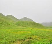 Pristine summer landscape of Dzuko Valley #2 :: Gallery