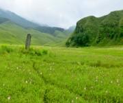 Landscape of Dzuko valley, Senapati #2 :: 360 View Panorama