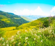 Landscape of Manipur #1 : Wallpaper Download :: e-pao Tools