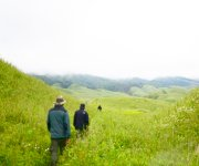 Trekking to Dzukou Valley in Senapati, Manipur #1 :: Gallery