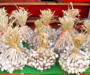 Garlic Festival : District Level Shuri Kaso Phanat at Tolloi, Ukhrul #3 :: Gallery