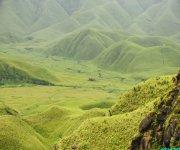 Trekking to Dzukou Valley in Senapati district, Manipur #1 :: Gallery