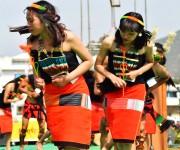 Lui-ngai-ni, Naga seed sowing festival at Senapati #2 :: Gallery