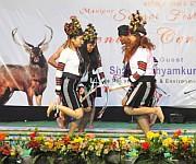 Dance from Churachandpur at Sangai Festival at Keibul Lamjao :: Gallery
