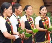 Laonii Festival, festival of Poumai tribe at Phuba Khuman, Senapati #2 :: Gallery