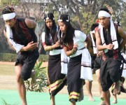 Folk Dance Festival at 'Beating of Retreat ceremony' of Republic Day #2 :: Gallery