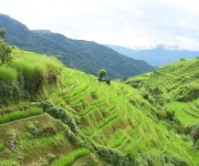 Landscape of Phuba Khuman, Senapati district #1 :: Galleryy