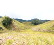 Buning Meadow  / Piulong Valley in Tamenglong District #2 :: Gallery