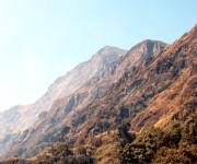 Wildfire in the hill ranges of Dzuko in Senapati District  #2 :: Gallery