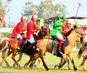 Saving Manipuri pony & polo