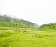 Landscape to Dzukou Valley in Senapati district, Manipur #6 :: Gallery
